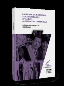 La Unión de Naciones Suramericanas (Unasur): alianzas estratégicas